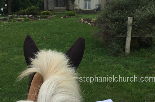 My mom's Belgian/Quarter Horse, Honey, and I training at historic Belmead, in Powhatan, VA, in June.